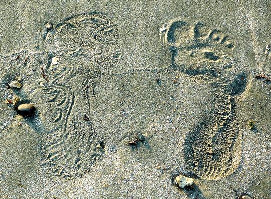 Duo de pieds ensablés