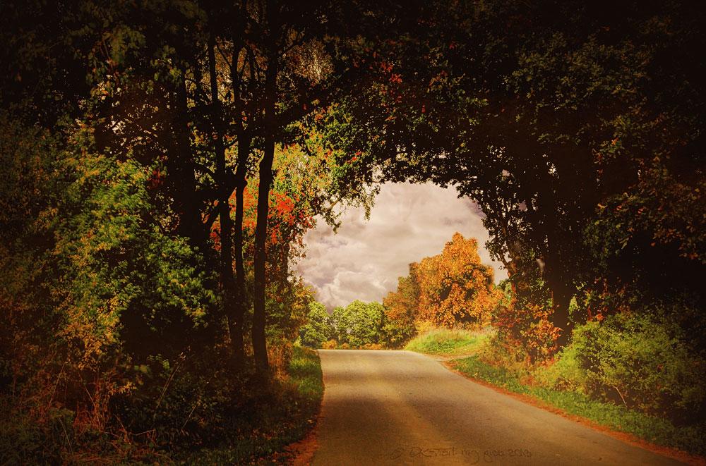 Durch den Herbst