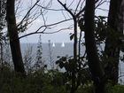 durch den Wald segeln