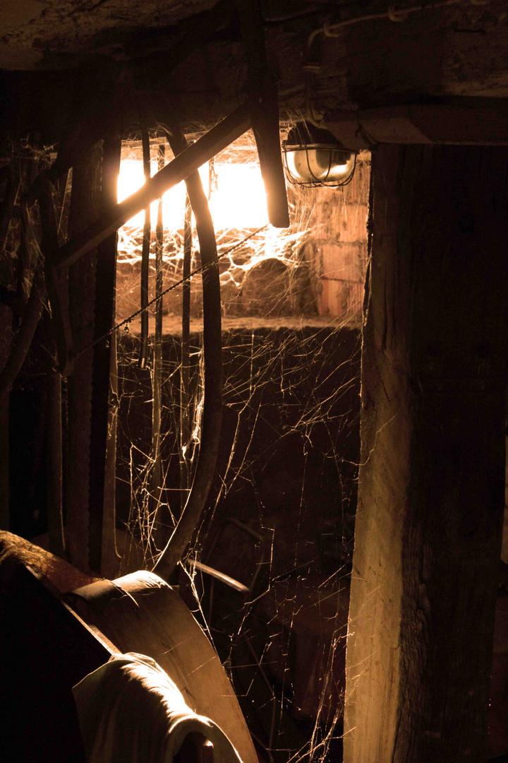 Durch die Kellertüre - Licht ins Dunkel
