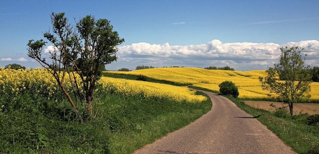 Durch die Lande im Frühling...