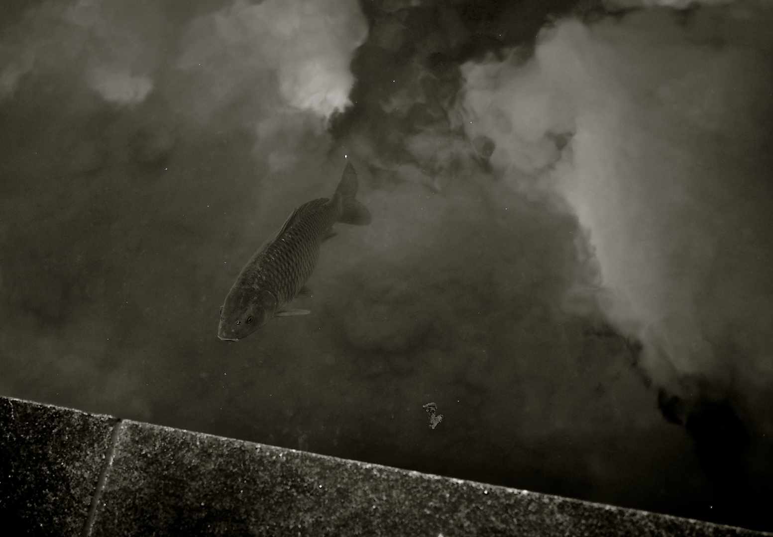 durch die Wolken schwimmen :)