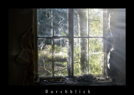 """Durchblick"""