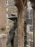 durchblick durch gotisches fenster der st.nikolai ruine