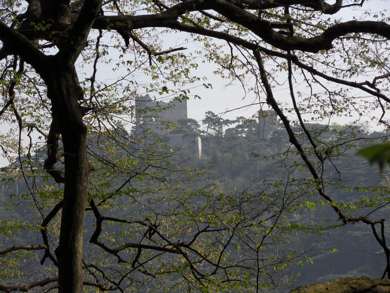 Durchblick zur Burgruine Mödling
