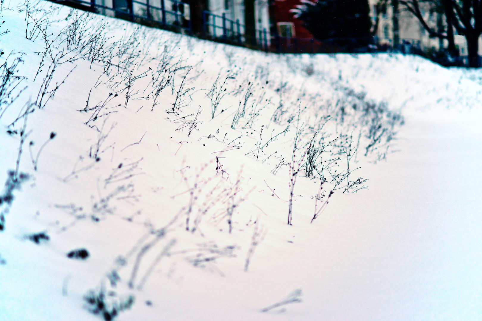 Durchbrochener Schnee