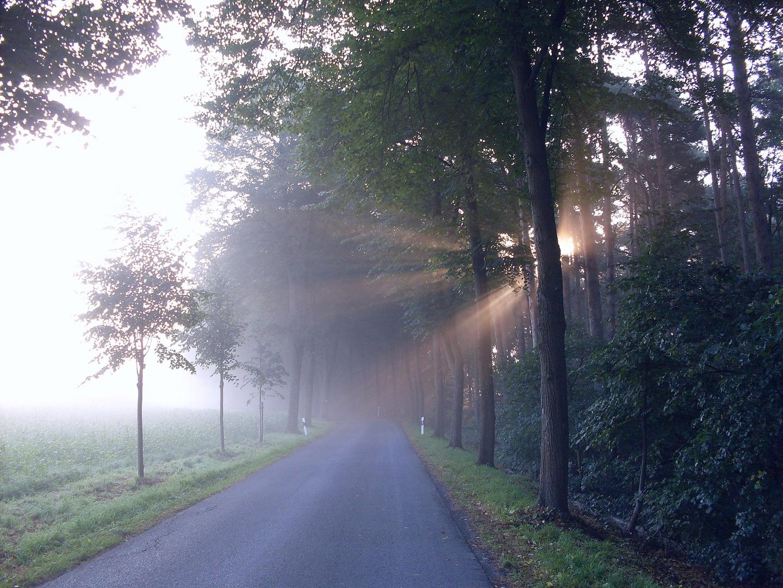 Durchbruch der Morgensonne