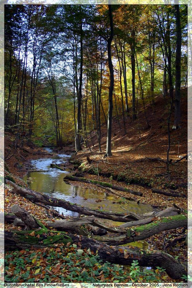 Durchbruchstal des Hellmühler Fließes