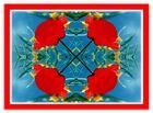 Durch`s Kaleidoskop geblickt 2