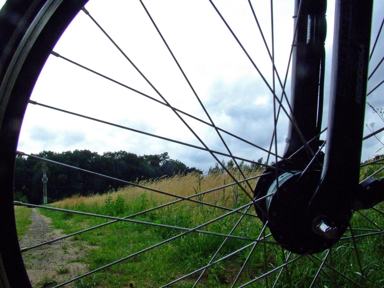 durchs Rad betrachtet