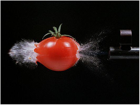 durchschossene Tomate