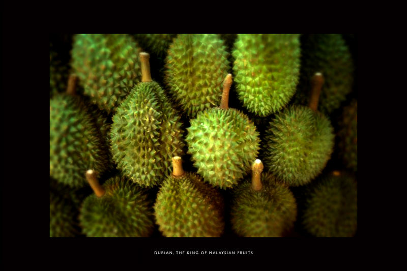 durian- the king of malaysian fruits