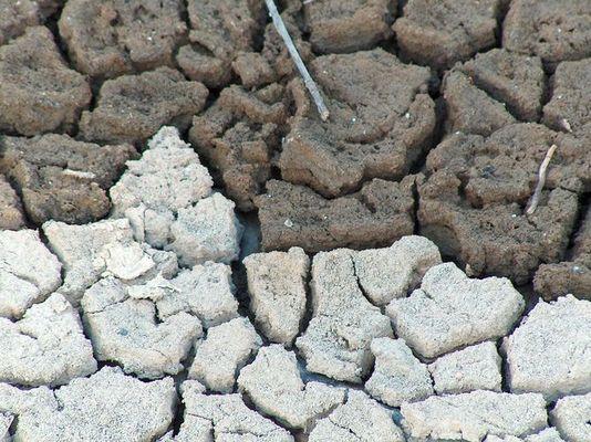 Durstige Erde