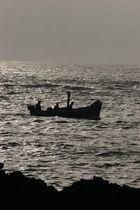Dusk Fishermen