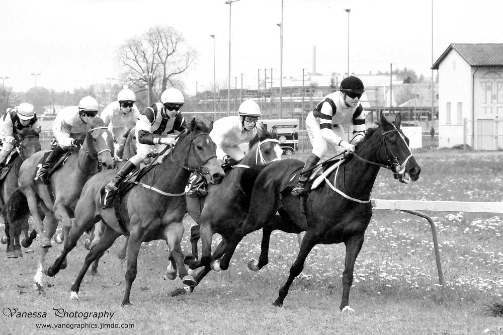Dynamik der Pferderennen
