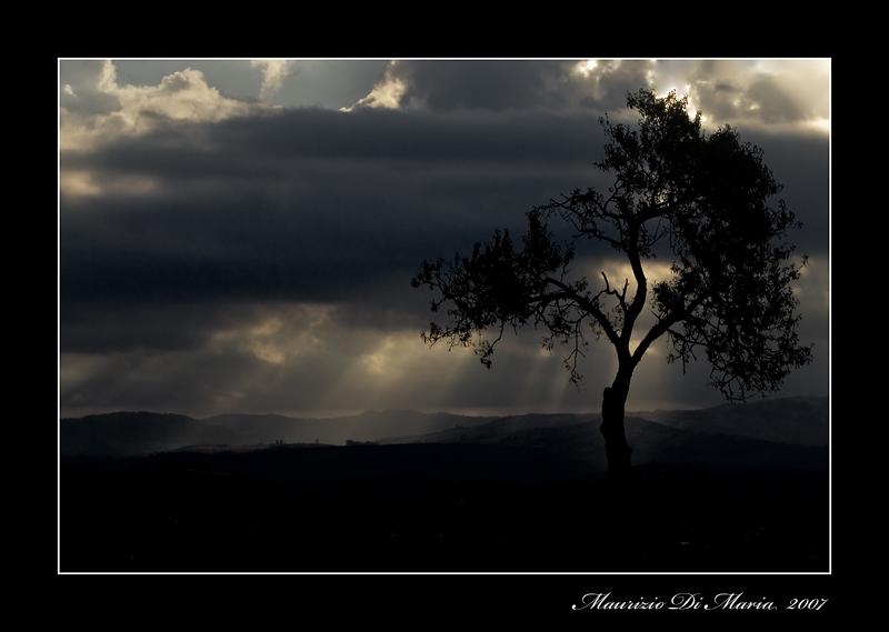 ........è Dio creò la luce.........