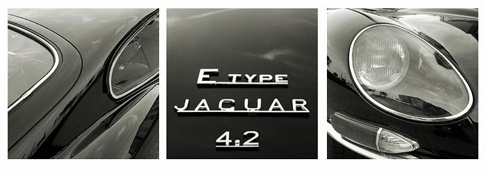 E-Type Details