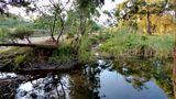 Caprice de rivière von Mahina