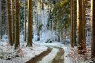 Der erste Schnee von Toralf G.