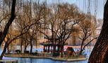 Beijing-hivernale (13) von JeanPierre