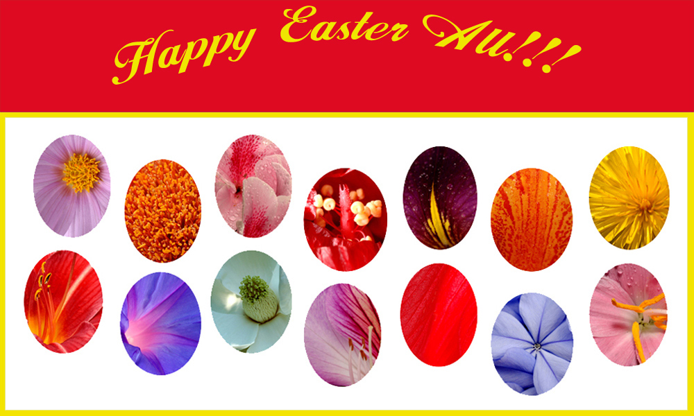 Easter Greetings From Asia!! Story Of My Fake Easter Eggs Within.
