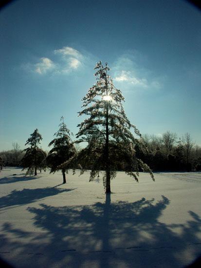 EastFork Park im Winter