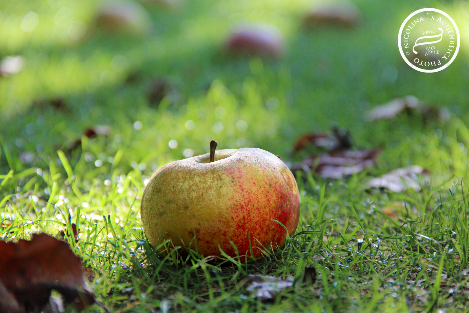 eat a apple a day to keep the doctor away