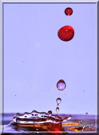 eau + grenadine