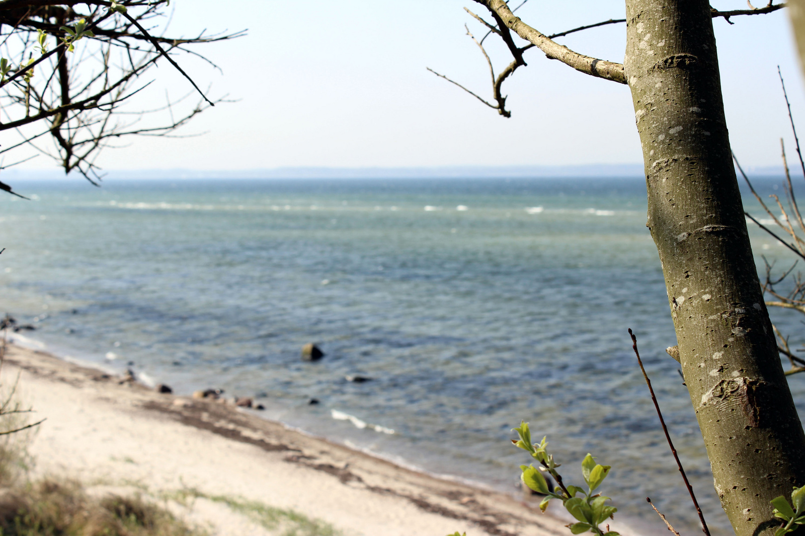 ebenfalls Steilküste in Stein bei Kiel