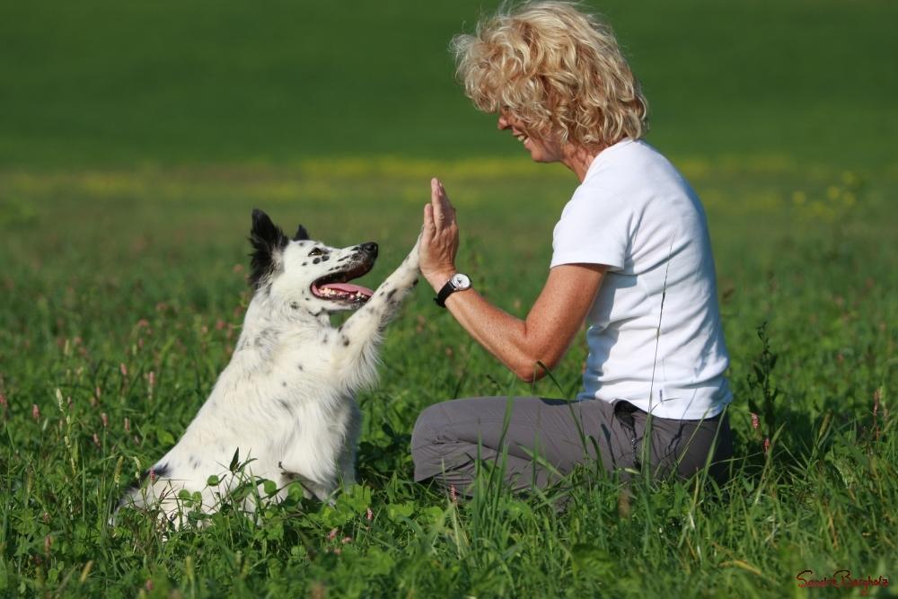 Echte Freundschaft Foto & Bild | tiere, tier und mensch