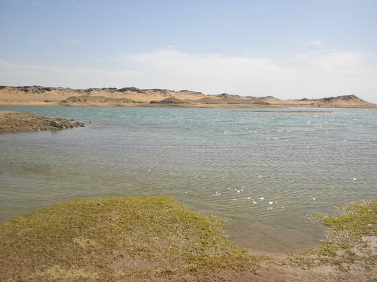 Eclats de lumière entre les dunes ---- l'eau