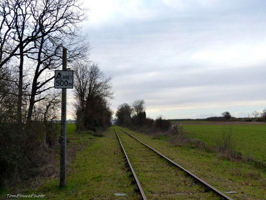 Ecologie - La voie ferrée verte
