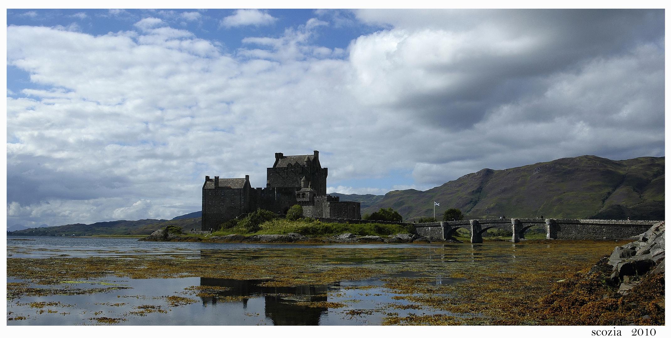 E.D.Castle
