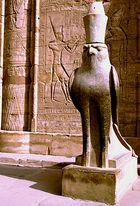 Edfu - Horus mit Pharaonenkrone
