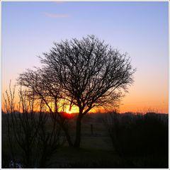Eduard Winter am Morgen…;)