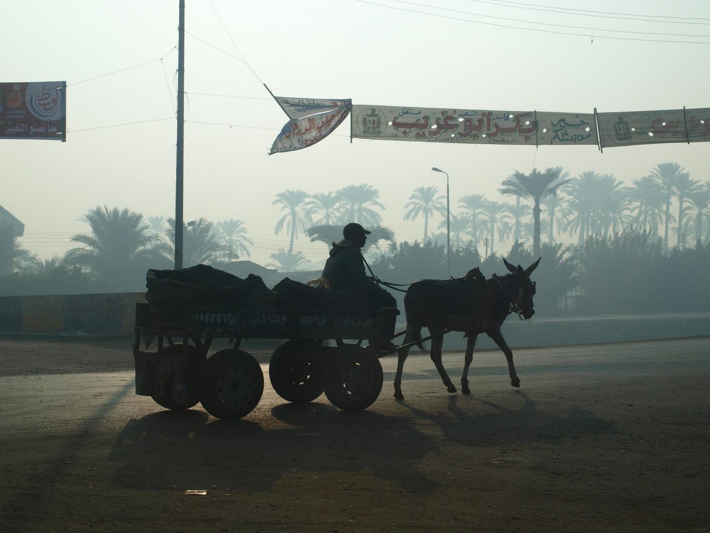 Egipto bucólico