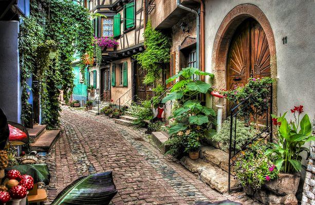 Eguisheim / Alsace