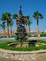 egypt..chrismas..tree