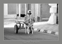 Egyptian Transport