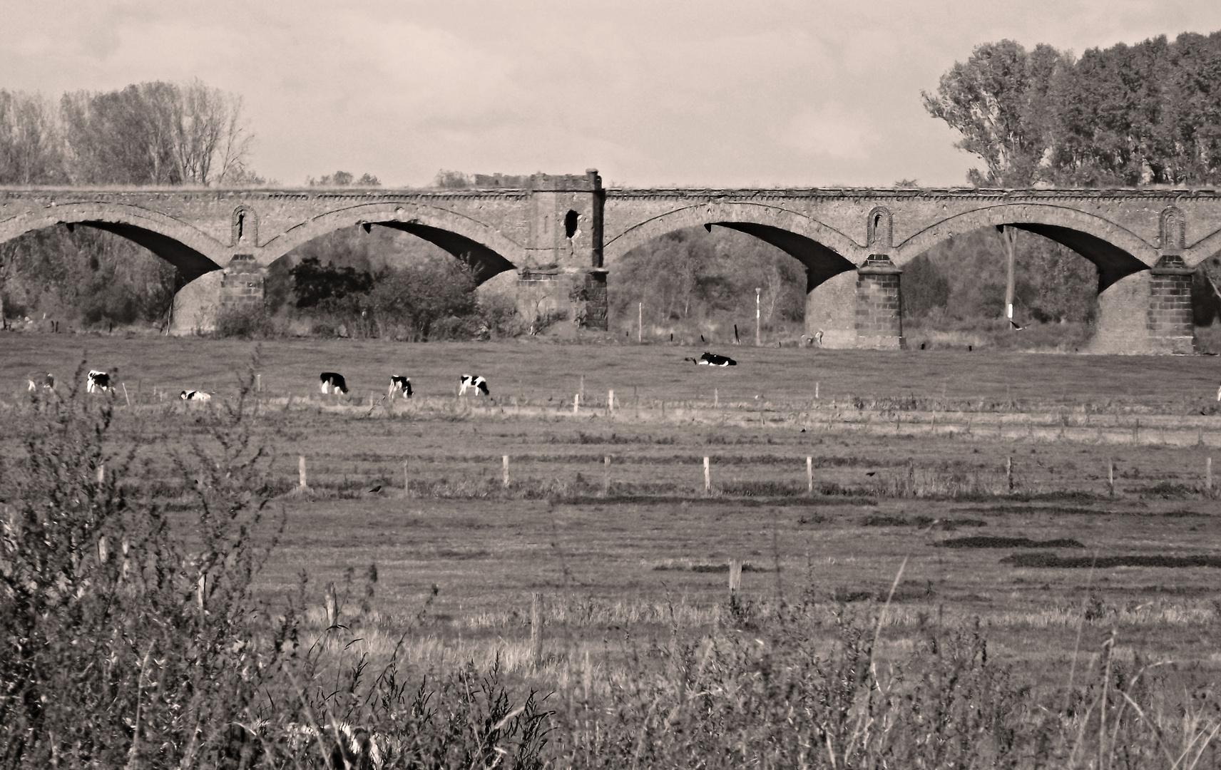 Ehemalige Eisenbahnbrücke
