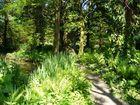 ehemaliges Landesgartenschau Gelände