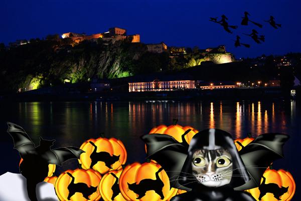 Ehrenbreitstein Halloween