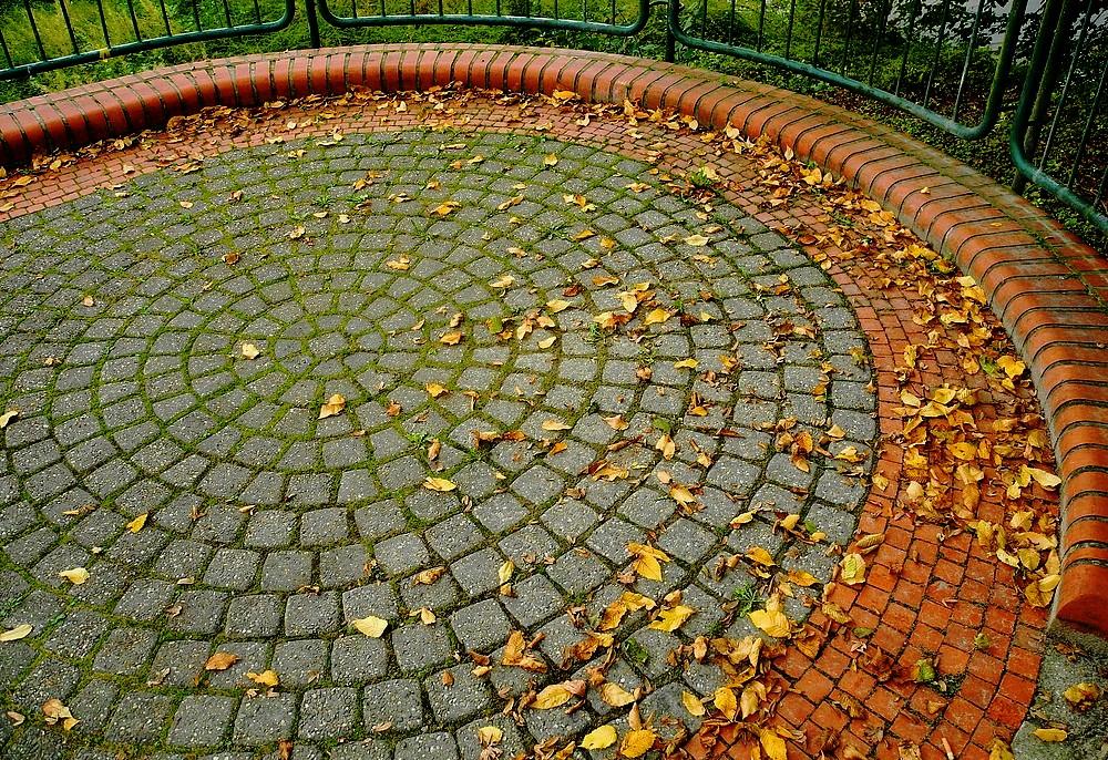 Ehrenrunde für Herbstlaub . . .