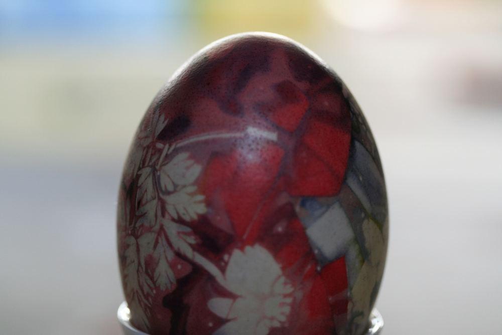 Ei- gentlich schönes Ei