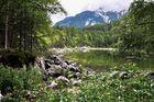 Eibsee, am Fuß der Zugspitze # 7