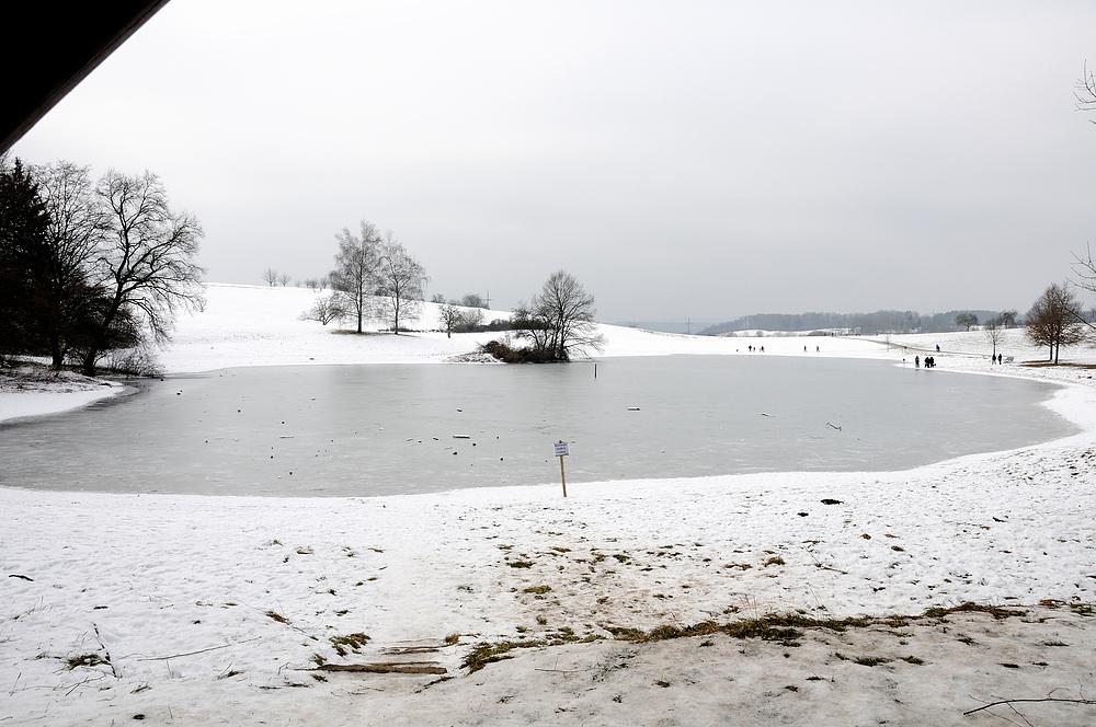 Eichener See als Flora-Fauna-Habitat unter europäischen Schutz   Nr.3
