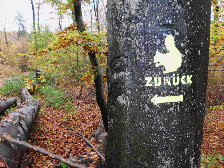 Eichhorn Crossing?