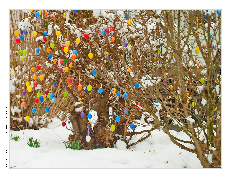 Eier im Schnee.....