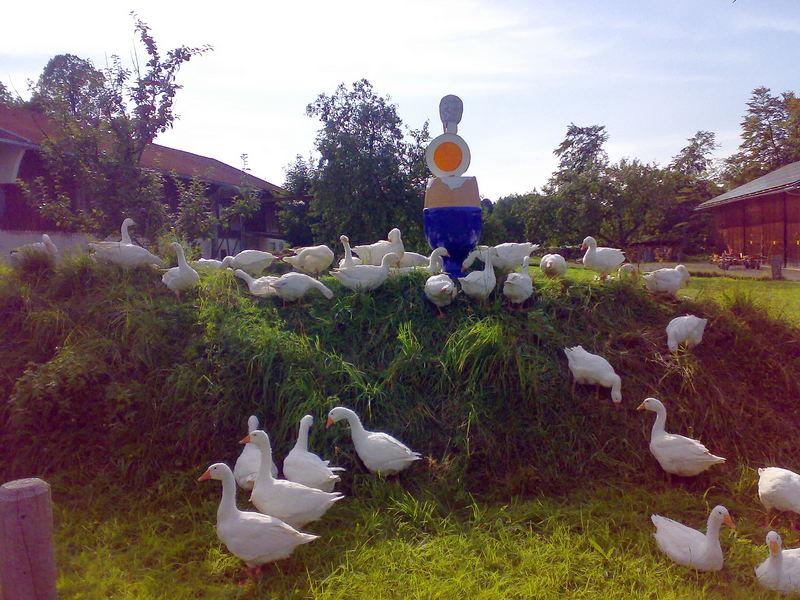 Eier In Hausham