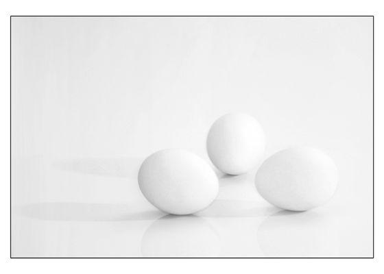 Eier, wir brauchen Eier!